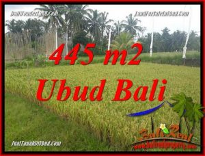 Affordable Property 445 m2 Land sale in Ubud Pejeng TJUB695