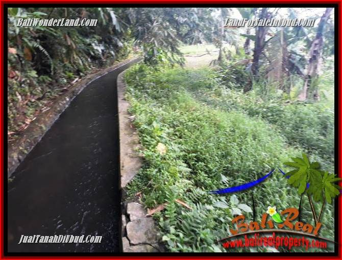 Beautiful Ubud Payangan 5,960 m2 Land for sale TJUB696
