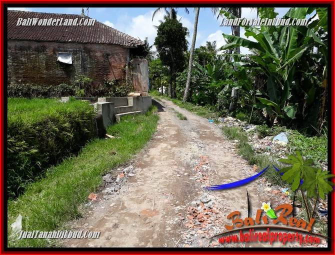 Affordable Land in Ubud for sale TJUB697