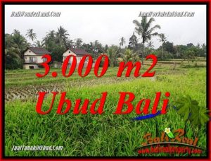 Beautiful Ubud Tegalalang 3,000 m2 Land for sale TJUB698