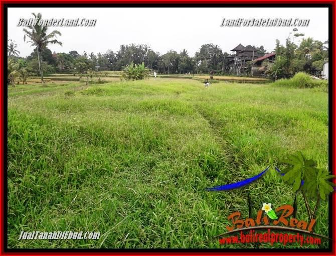 Beautiful Ubud Tegalalang 3,000 m2 Land for sale TJUB698