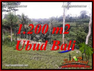FOR sale Beautiful Land in Ubud TJUB699
