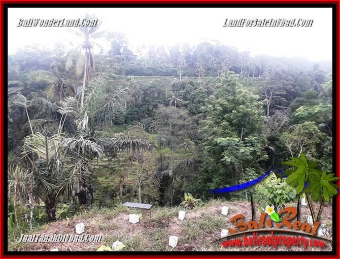 FOR sale Beautiful Land in Ubud TJUB699