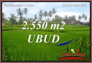 Beautiful Property Ubud Pejeng 2,550 m2 Land for sale TJUB700