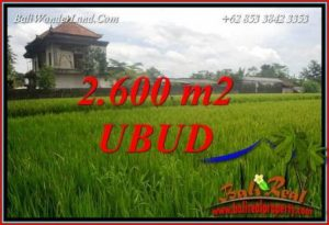 Affordable Property 2,600 m2 Land for sale in Ubud Pejeng TJUB701