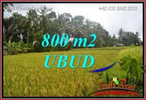Beautiful Property Land in Ubud Bali for sale TJUB707