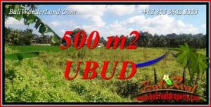 Exotic Property Land for sale in Ubud Bali TJUB724