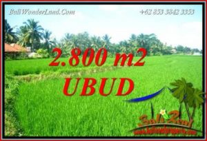 Exotic 2,800 m2 Land in Sentral Ubud for sale TJUB726