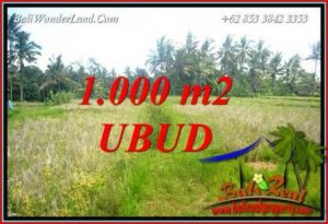 Affordable 1,000 m2 Land for sale in Ubud Bali TJUB727