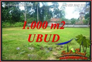 FOR sale 1,000 m2 Land in Ubud Bali TJUB728
