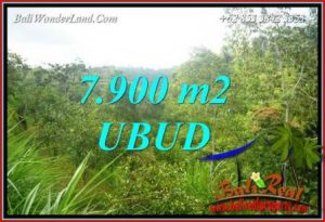 Beautiful 7,900 m2 Land sale in Ubud Tegalalang TJUB729