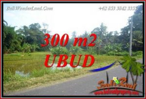 FOR sale Beautiful Land in Ubud TJUB730