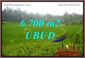 FOR sale Magnificent Property Land in Ubud TJUB731