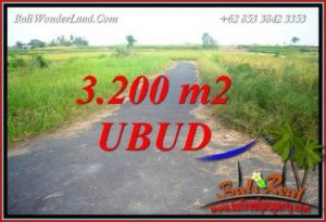 3,200 m2 Land in Ubud Bali for sale TJUB736