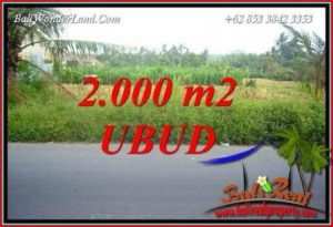 Affordable 2,000 m2 Land for sale in Ubud Bali TJUB737