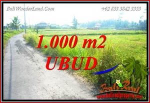 1,000 m2 Land in Ubud Bali for sale TJUB739