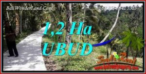 Magnificent Ubud Land for sale TJUB740