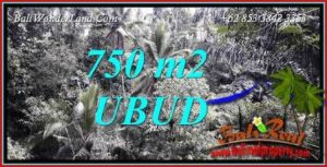 Beautiful Property Ubud Bali Land for sale TJUB742