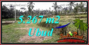 FOR sale Land in Ubud Tegalalang Bali TJUB743