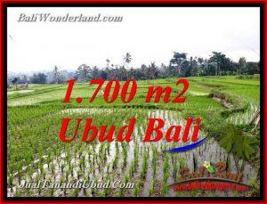 Magnificent PROPERTY TEGALALANG UBUD 1,700 m2 LAND FOR SALE TJUB770