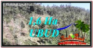 Affordable UBUD BALI 16,000 m2 LAND FOR SALE TJUB748