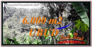 Beautiful PROPERTY UBUD BALI LAND FOR SALE TJUB750