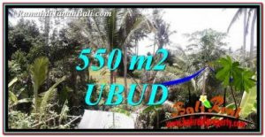 FOR SALE 550 m2 LAND IN UBUD BALI TJUB751
