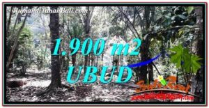 Beautiful LAND IN UBUD FOR SALE TJUB755