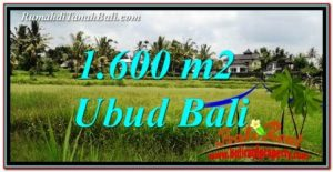 FOR SALE Exotic PROPERTY LAND IN UBUD TJUB756