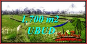 Magnificent PROPERTY UBUD BALI LAND FOR SALE TJUB745