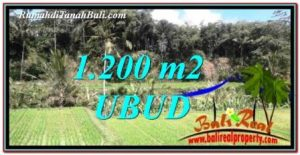 FOR SALE Beautiful PROPERTY LAND IN UBUD BALI TJUB746