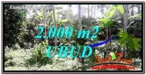 Exotic PROPERTY 2,000 m2 LAND IN Ubud Tegalalang FOR SALE TJUB747