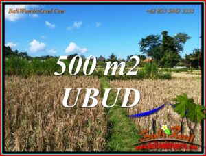 Beautiful Sukawati Gianyar BALI 500 m2 LAND for SALE TJUB810
