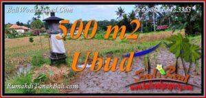 Beautiful PROPERTY LAND in Tampaksiring BALI for SALE TJUB812